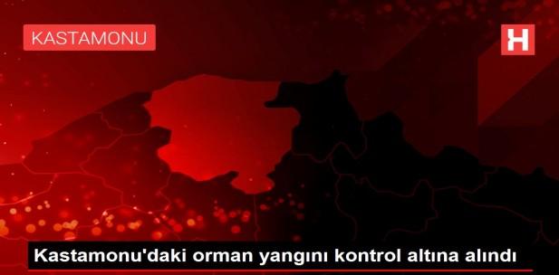 Son dakika… Kastamonu'daki orman yangını kontrol altına alındı