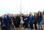 Balkan Arboretumu Ağaç Dikim Töreni